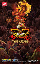 Street Fighter V Type Arcade